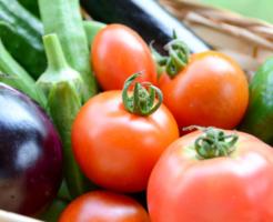 ベランダ菜園初心者におすすめの野菜は?準備するものは?
